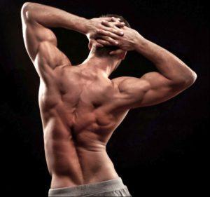Анатомический атлас мышц спины